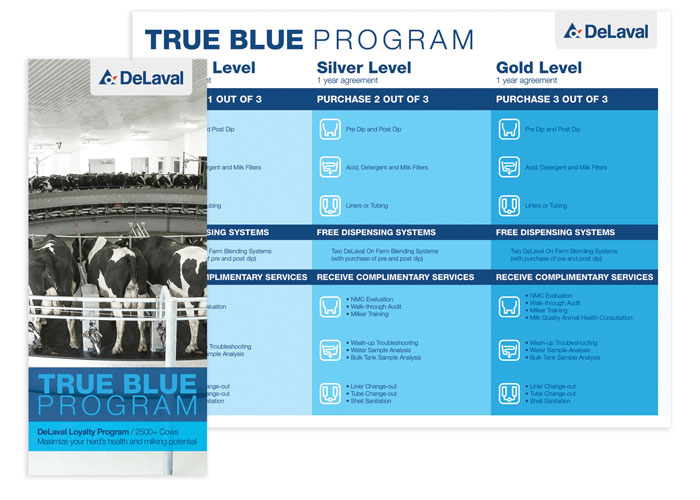 True Blue Program Trifold