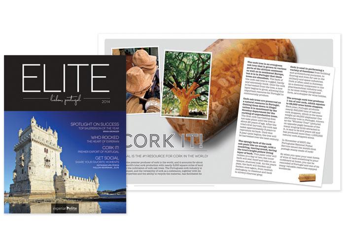 Elite 2014 Magazine by Experian
