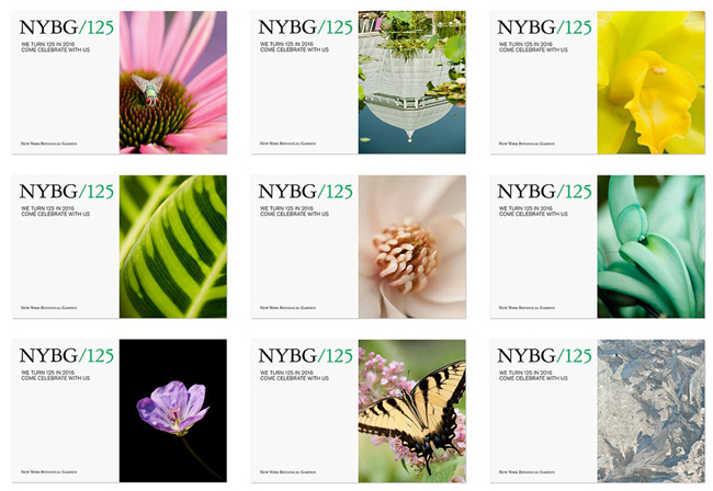 new_york_botanical_garden_125_postcards