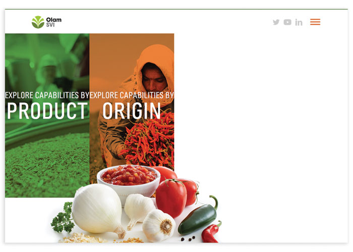 Olam SVI Website by MJR Creative Group