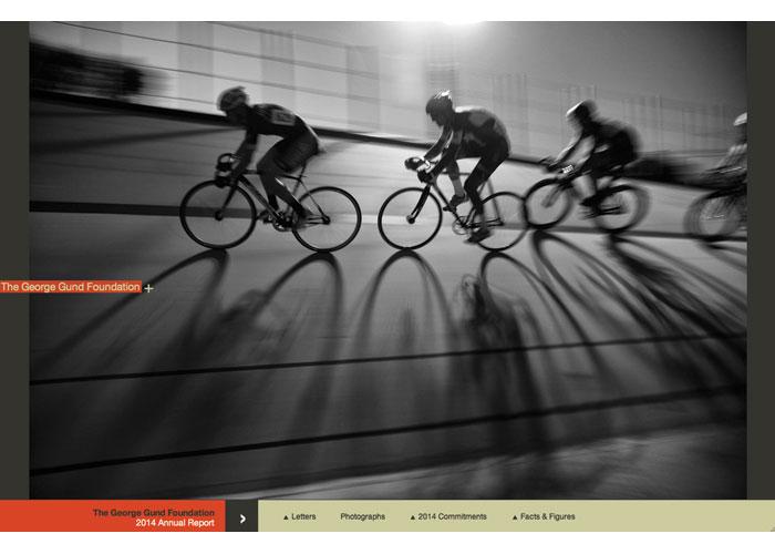 2014 Annual Report Website