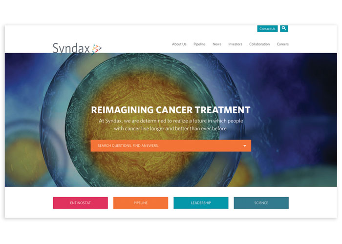 Syndax Website by Bop Design