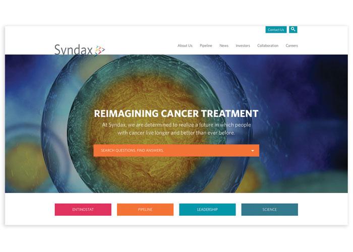 Syndax Website by Bop Design