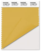 PANTONE-14-0952-Spicy-Mustard
