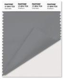 PANTONE-17-3914-Sharkskin