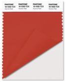PANTONE-18-1550-Aurora Red
