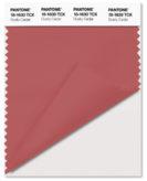 PANTONE-18-1630-Dusty-Cedar