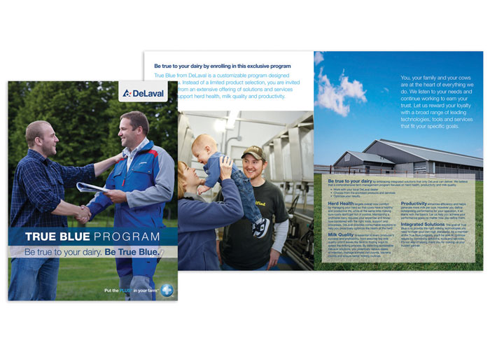 True Blue Program Brochure