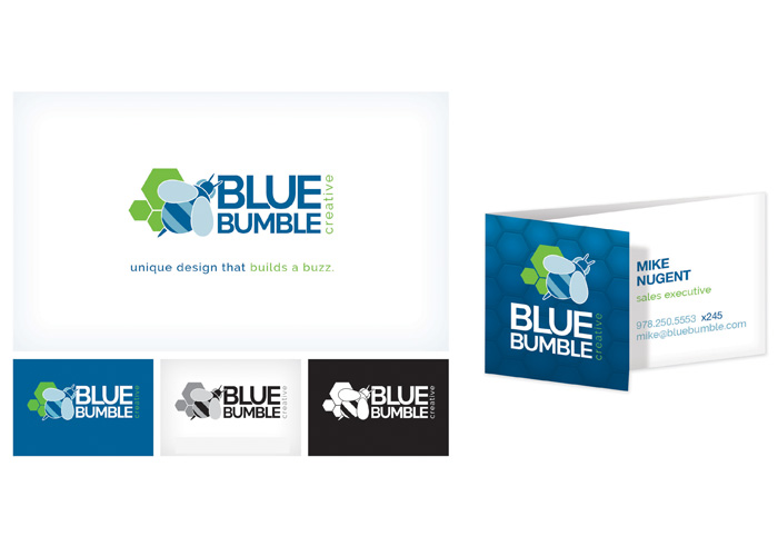 Blue Bumble Creative Rebrand (from DSI Marketing)