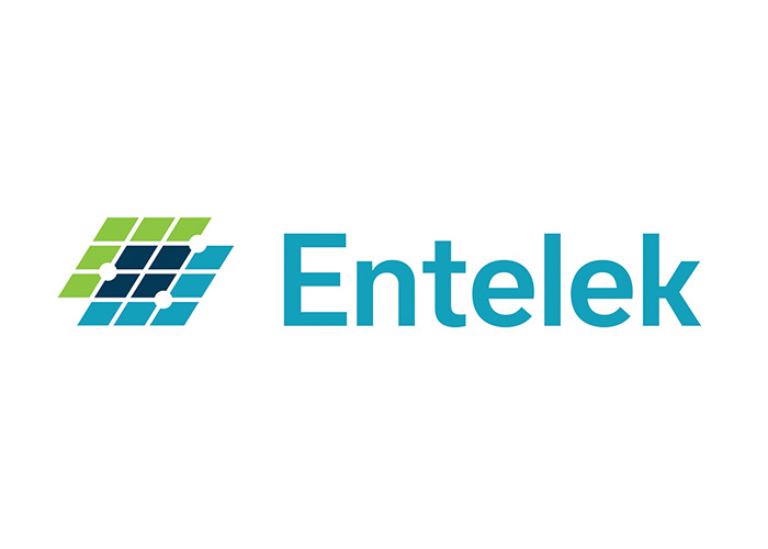 Entelek Logo by Gerard