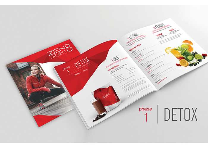 Zen Project 8 Brochure by Jeunesse Global