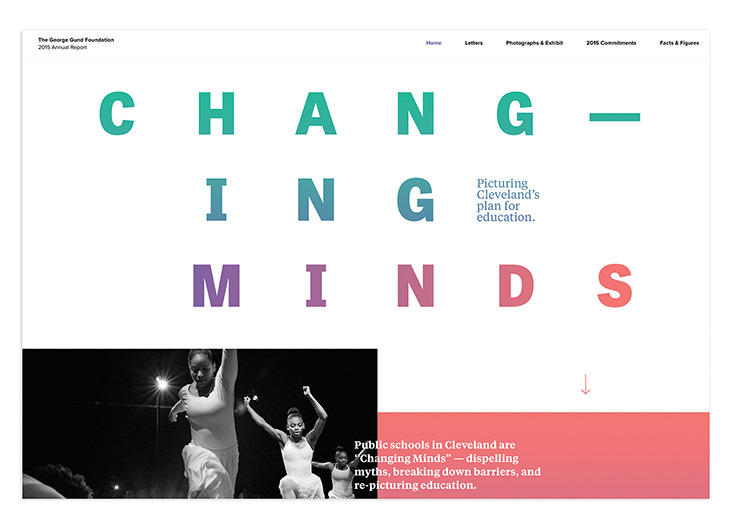 2015 Annual Report Website by Nesnadny + Schwartz