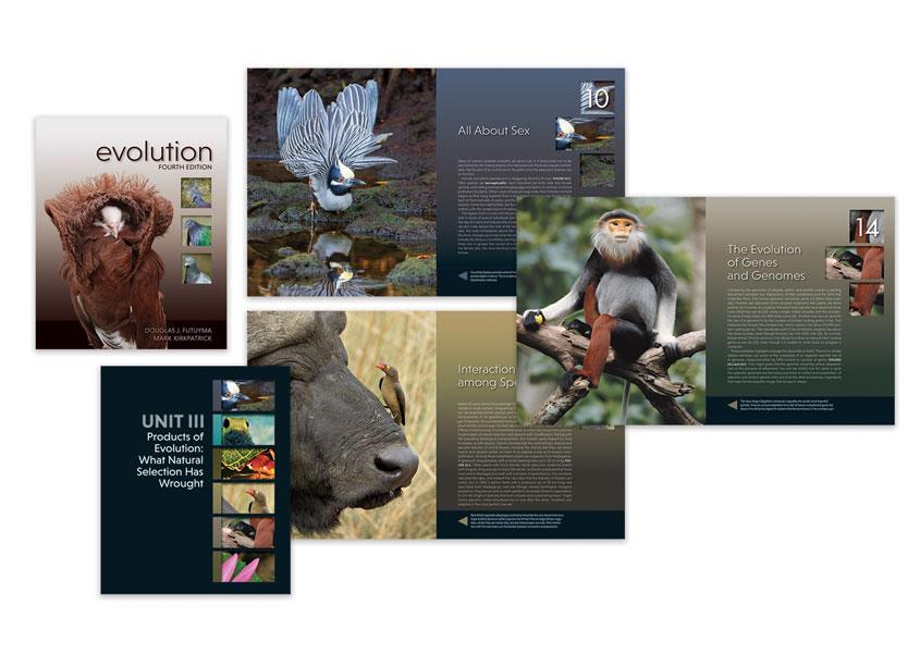 Evolution 4E Book Design by Sinauer Associates
