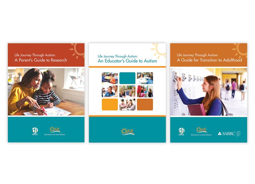 Lisa Cain Design Guide Series