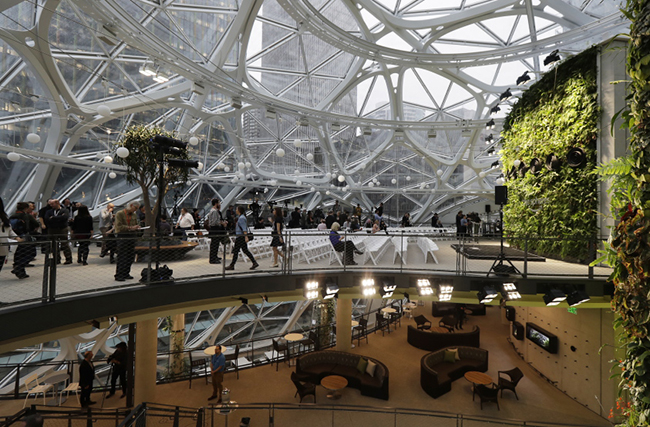 AMAZON_SPHERES_20010.JPG-12CA4
