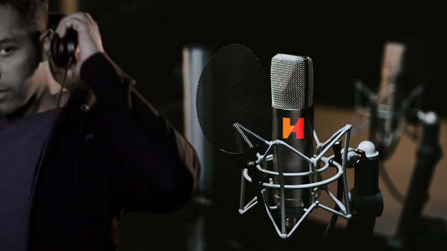 HITCO MICROPHONE HR
